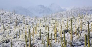 1400-tuscon-az-snow.imgcache.rev1414084745205.web.1400.720